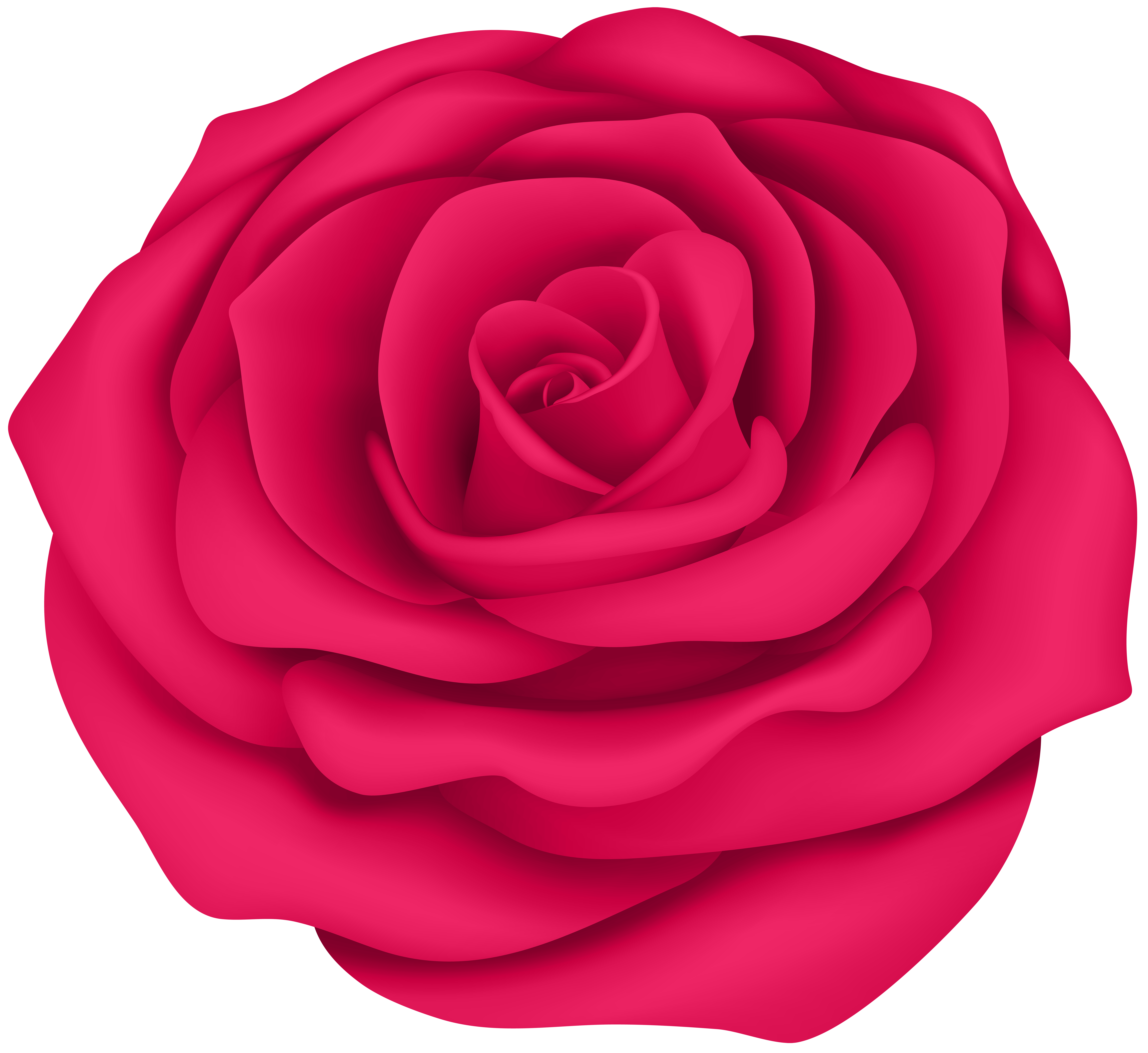 Clipart rose blossom. Flower at getdrawings com