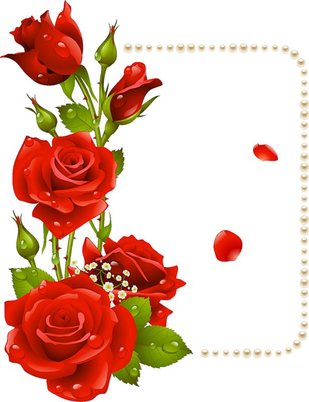 fr s pinterest. Clipart rose blossom
