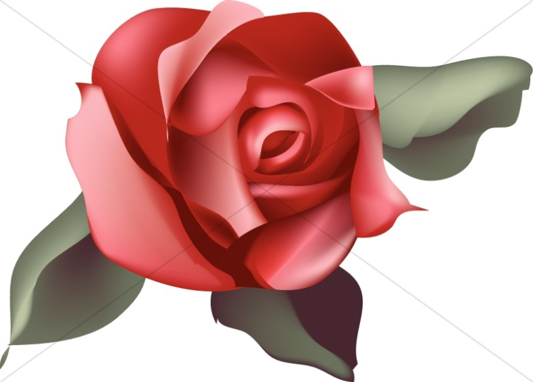 Single red church . Clipart rose blossom