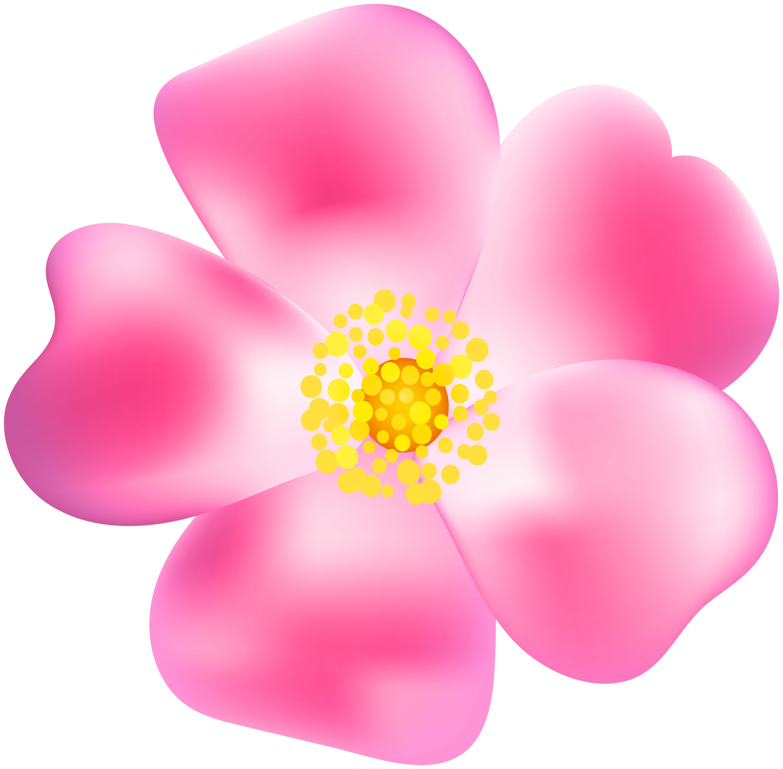 Pink png transparent clip. Clipart rose blossom