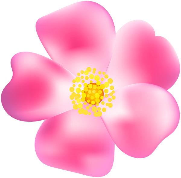 Pink rose png transparent. Clipart roses blossom