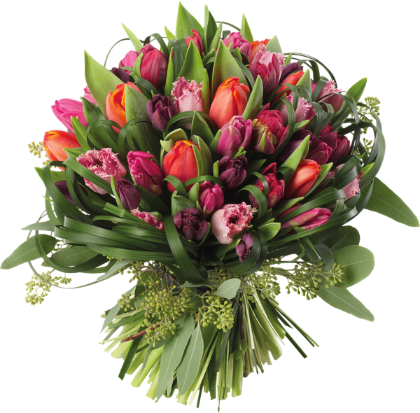 Transparent tulips bouquet png. Funeral clipart condolence flower