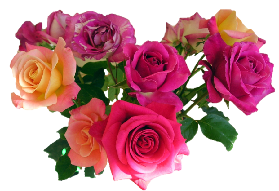 Clipart roses bunch. Bouquet of flowers png