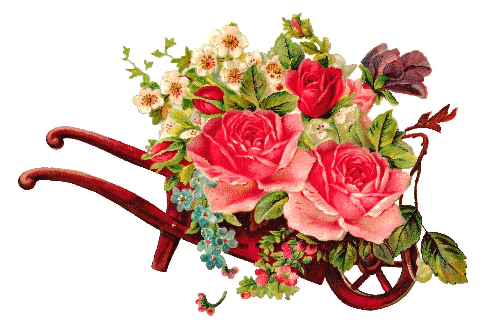 Clipart rose bunch. Antique images free digital
