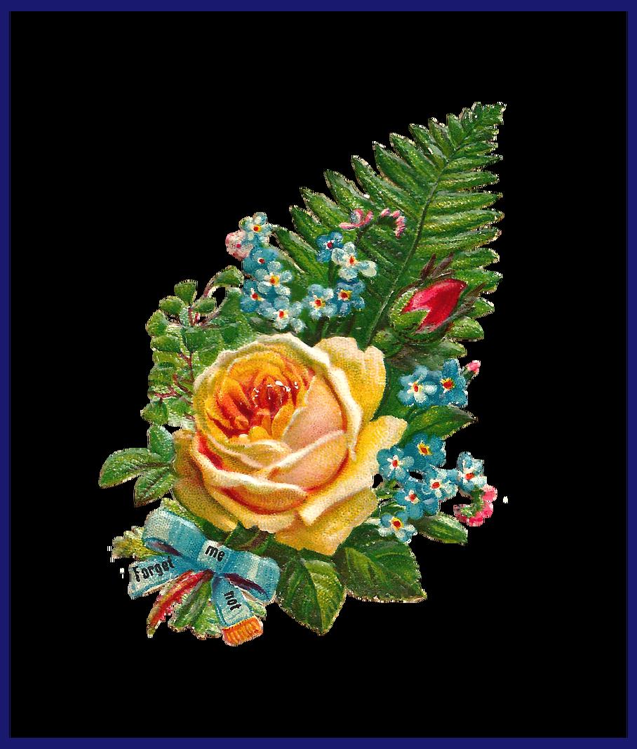 Best antique clip art. Clipart rose bunch