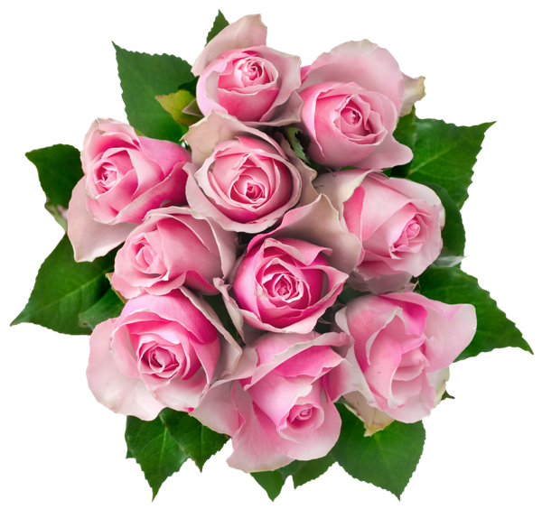 Clipart roses bunch. Http favata rssing com