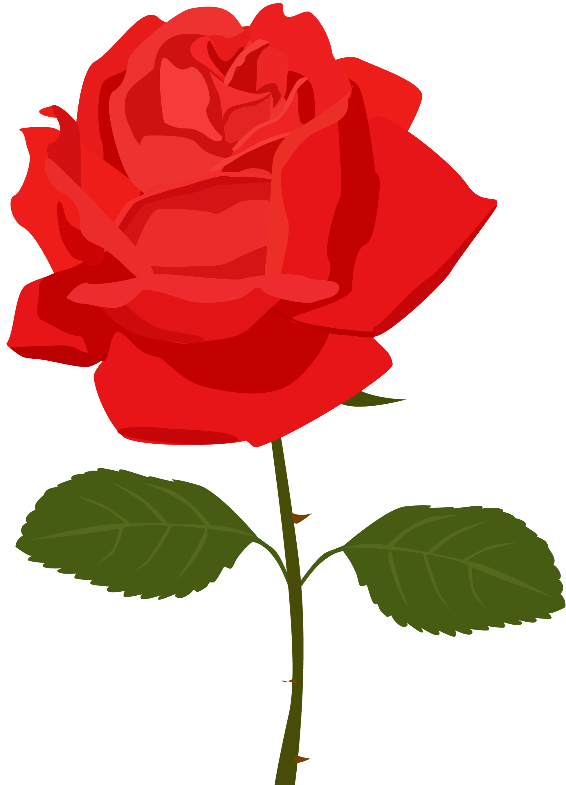 Transparent red png picture. Rose clipart animated