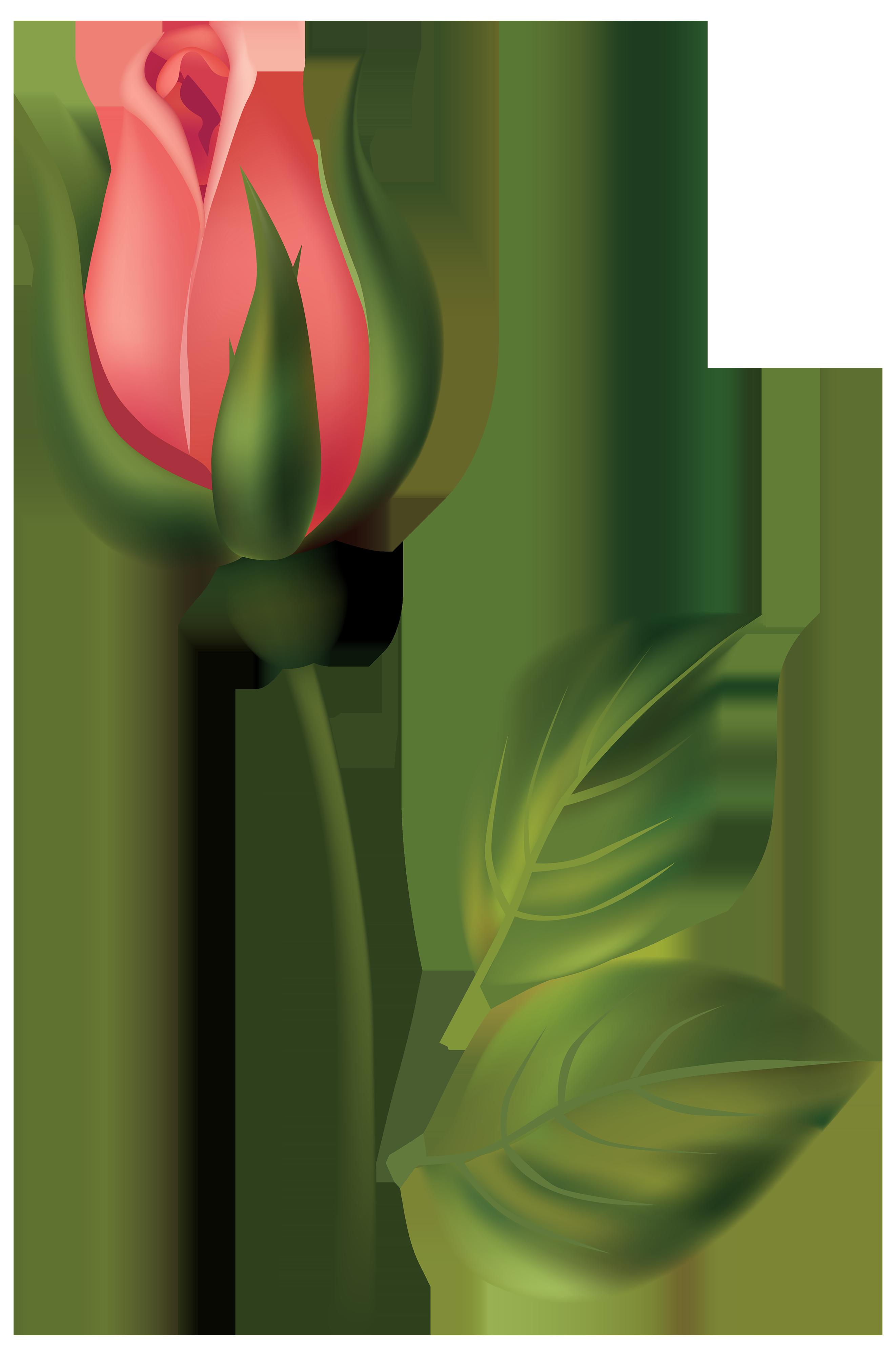Stem red png best. Rose clipart rose bud