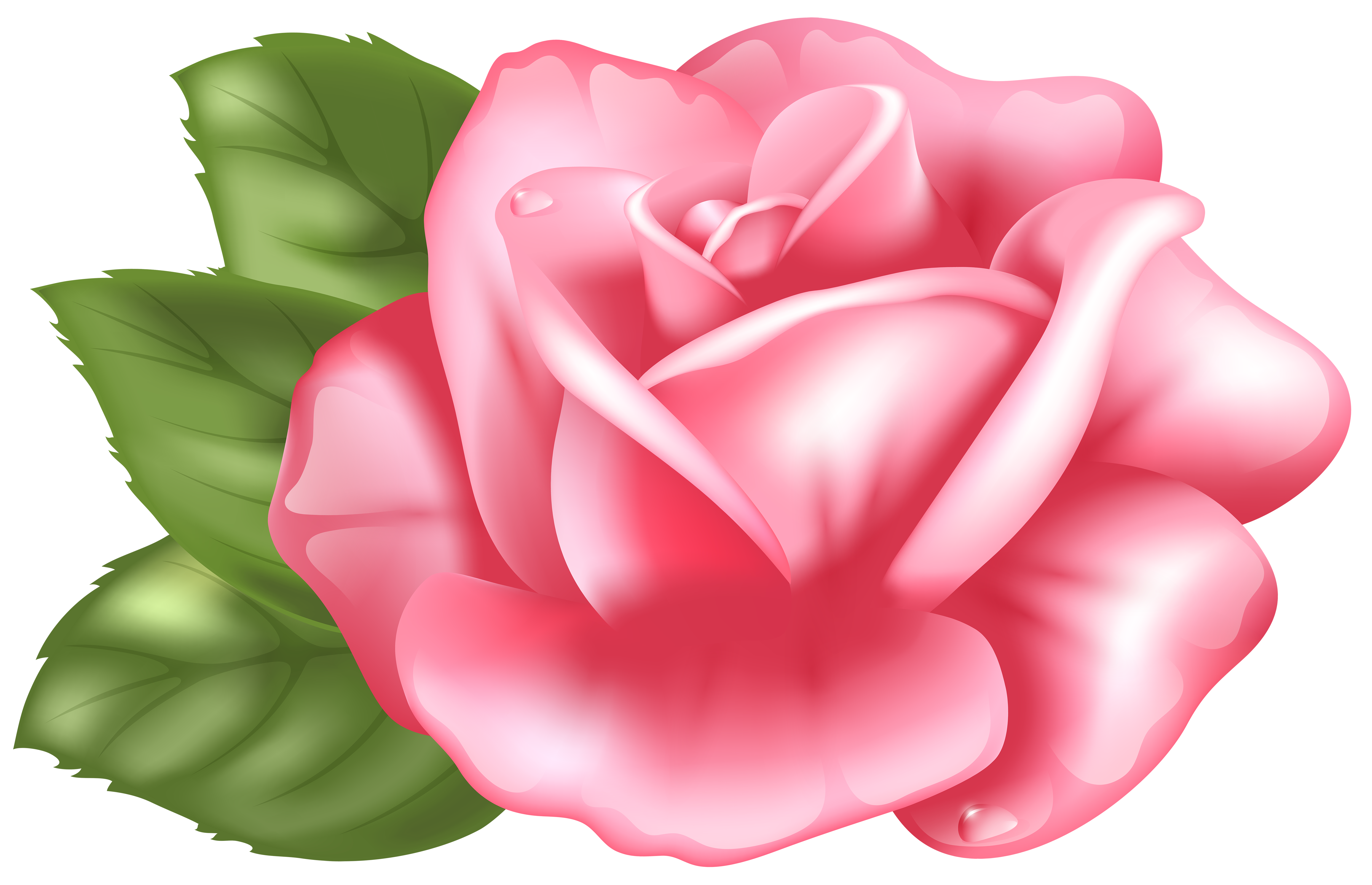 Clipart roses cartoon. Pink rose encode to