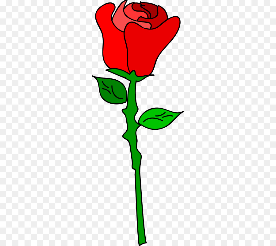 Drawing of family rose. Clipart roses cartoon