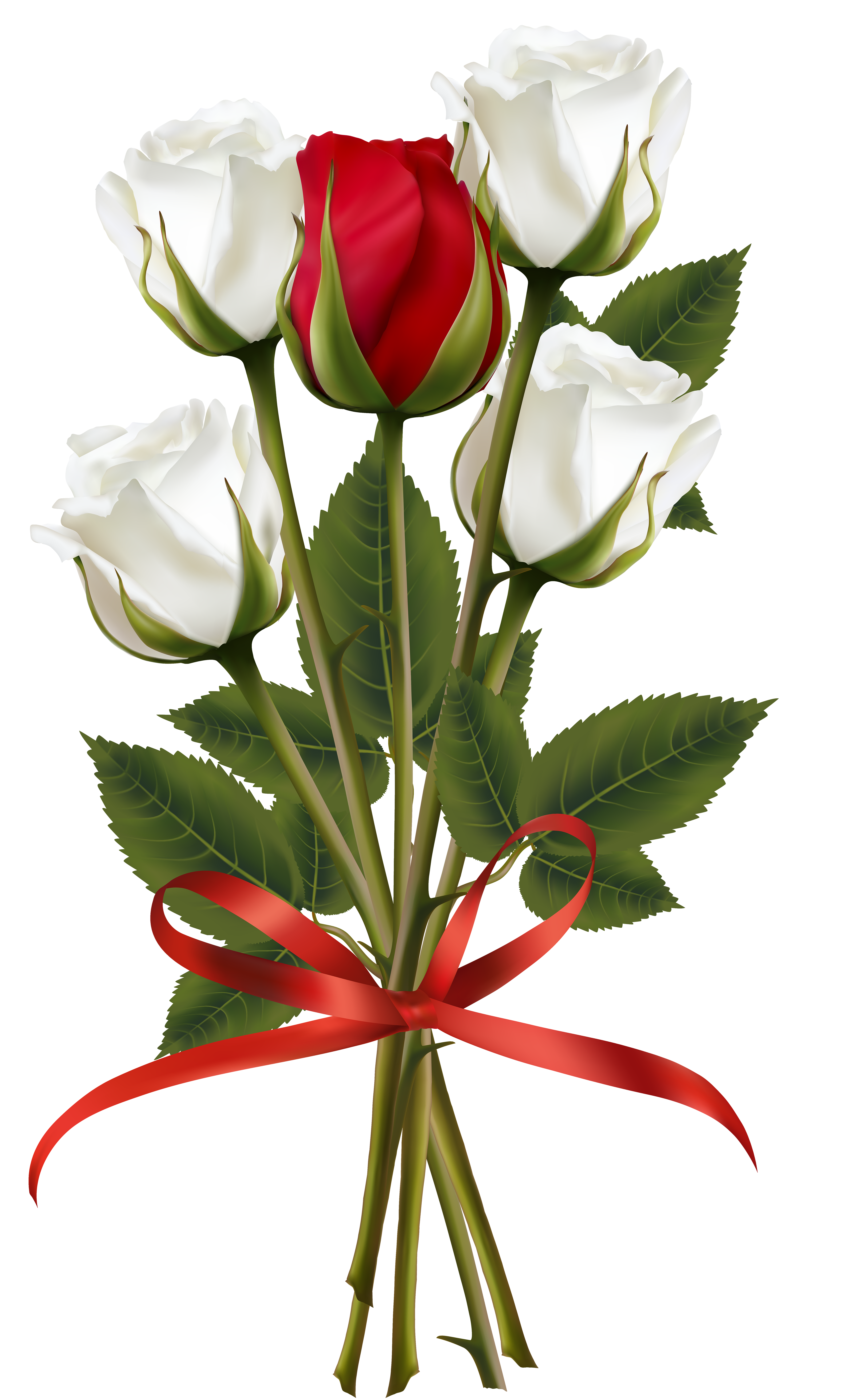 White and red bouquet. Clipart rose cartoon