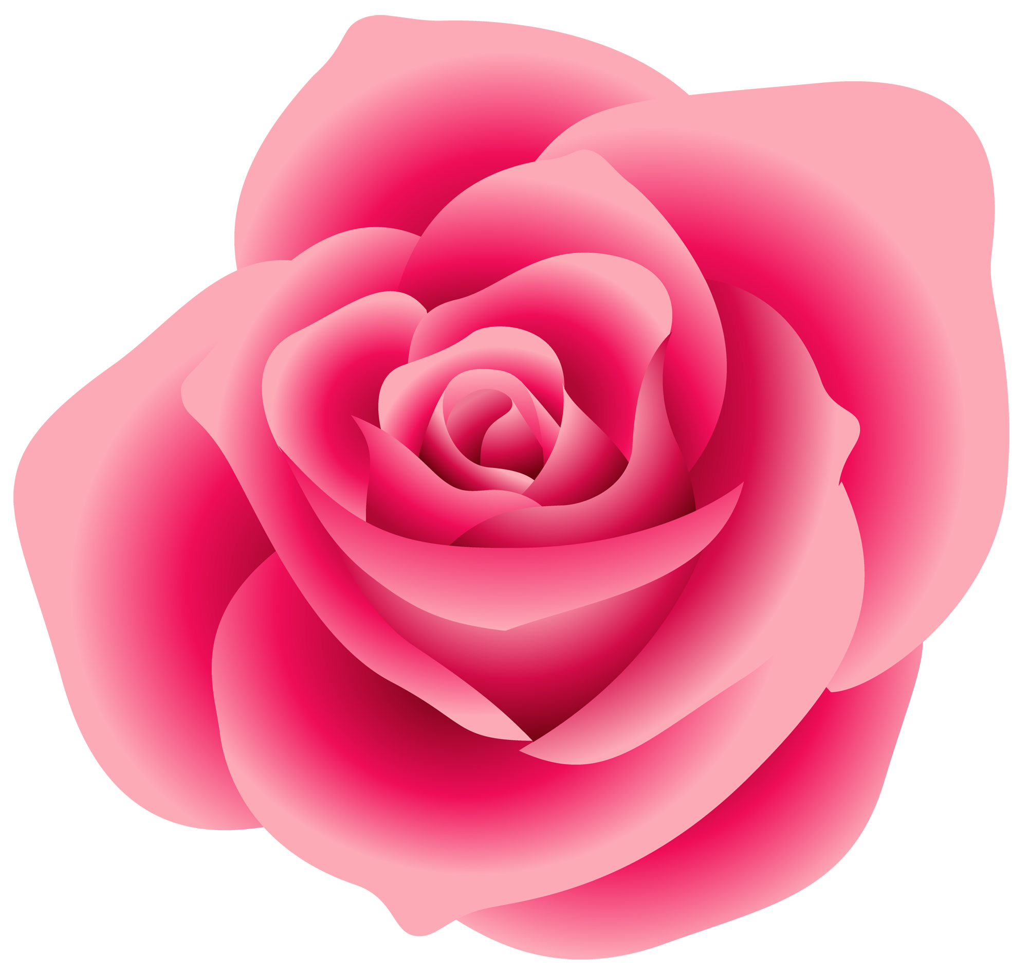 Large pink gallery yopriceville. Clipart rose cartoon