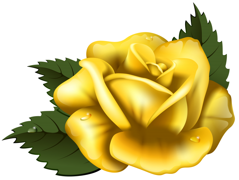 Yellow transprent png free. Clipart rose clip art
