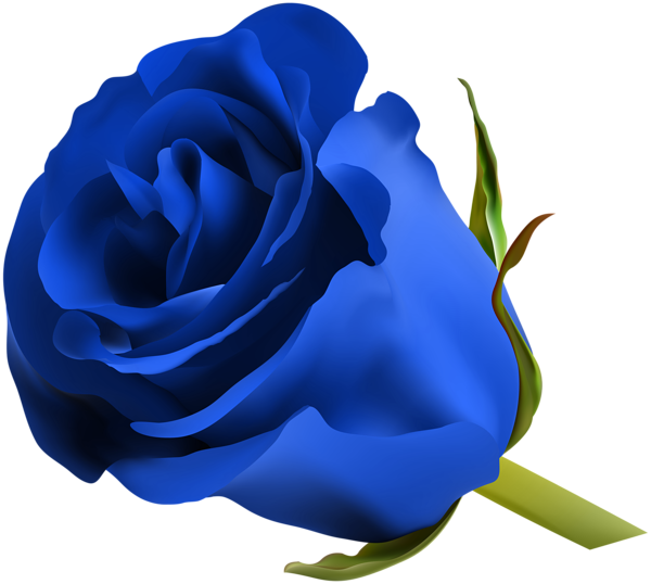 Night clipart royal blue. Rose png clip art
