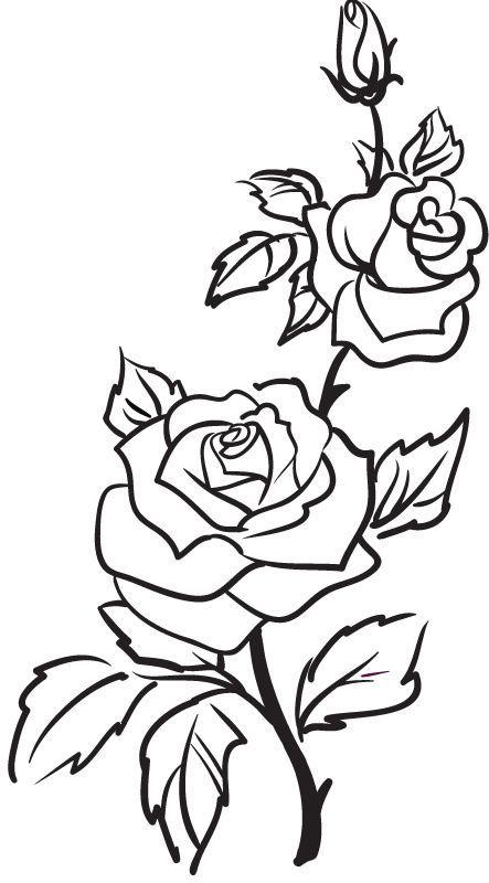 Rose outline tattoo flower. Clipart roses doodle