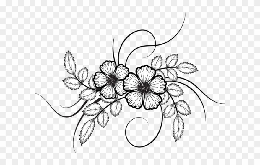 White flower drawing png. Rose clipart doodle