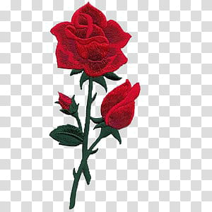 Clipart rose embroidery. Red transparent background png