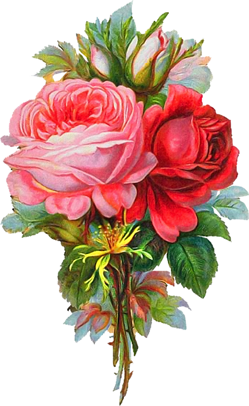 Pin by on pinterest. Clipart rose embroidery