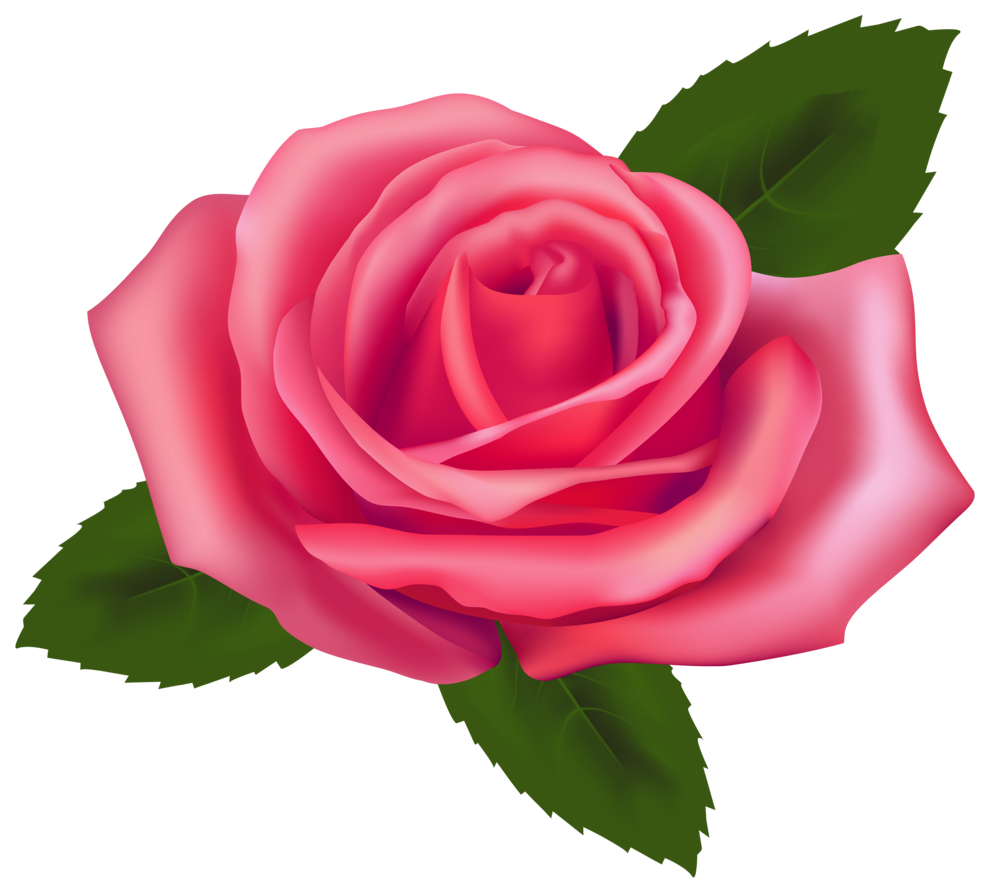 Clipart rose emoji. Beautiful pink png