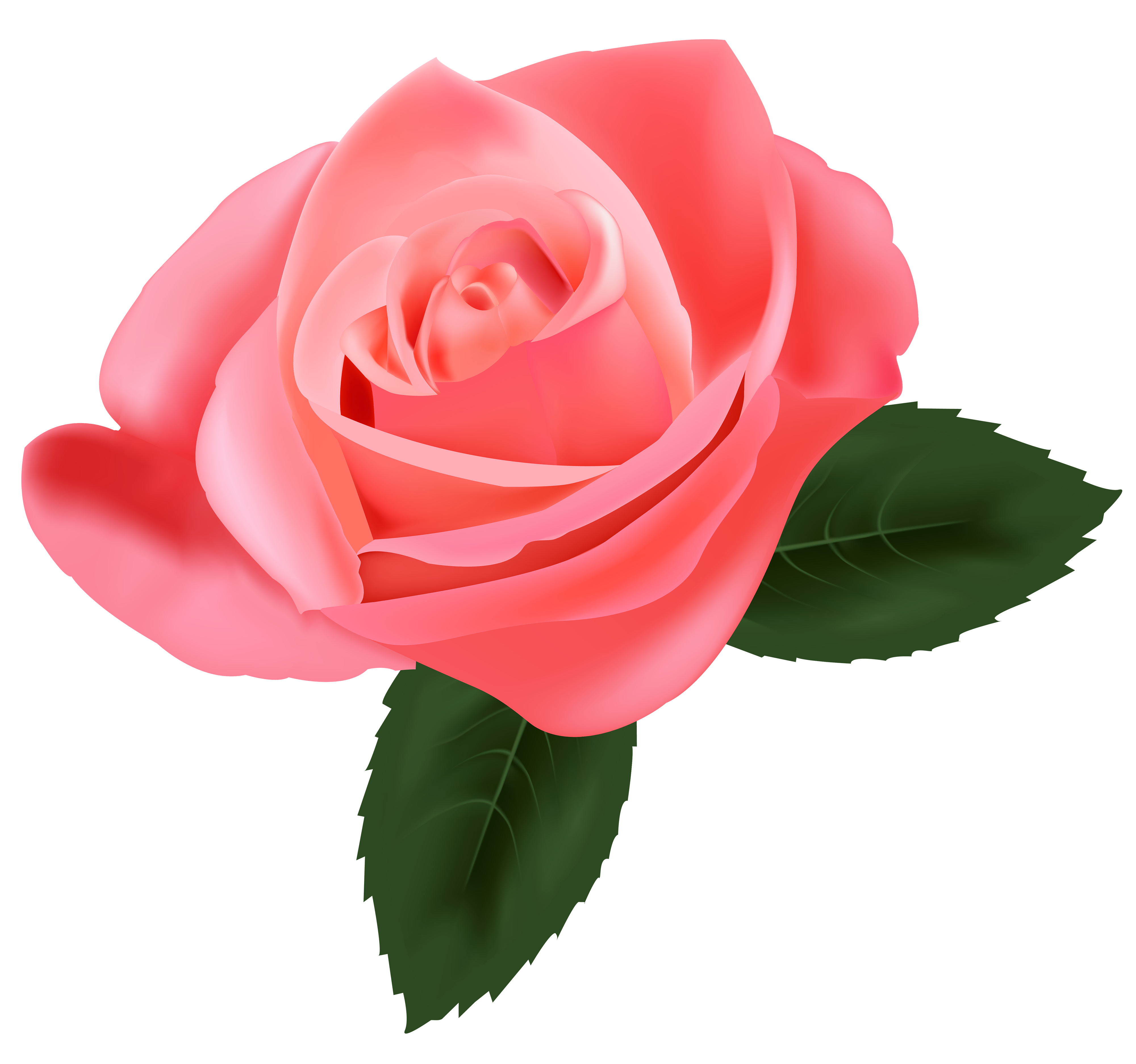 Pink rose png best. Clipart roses emoji