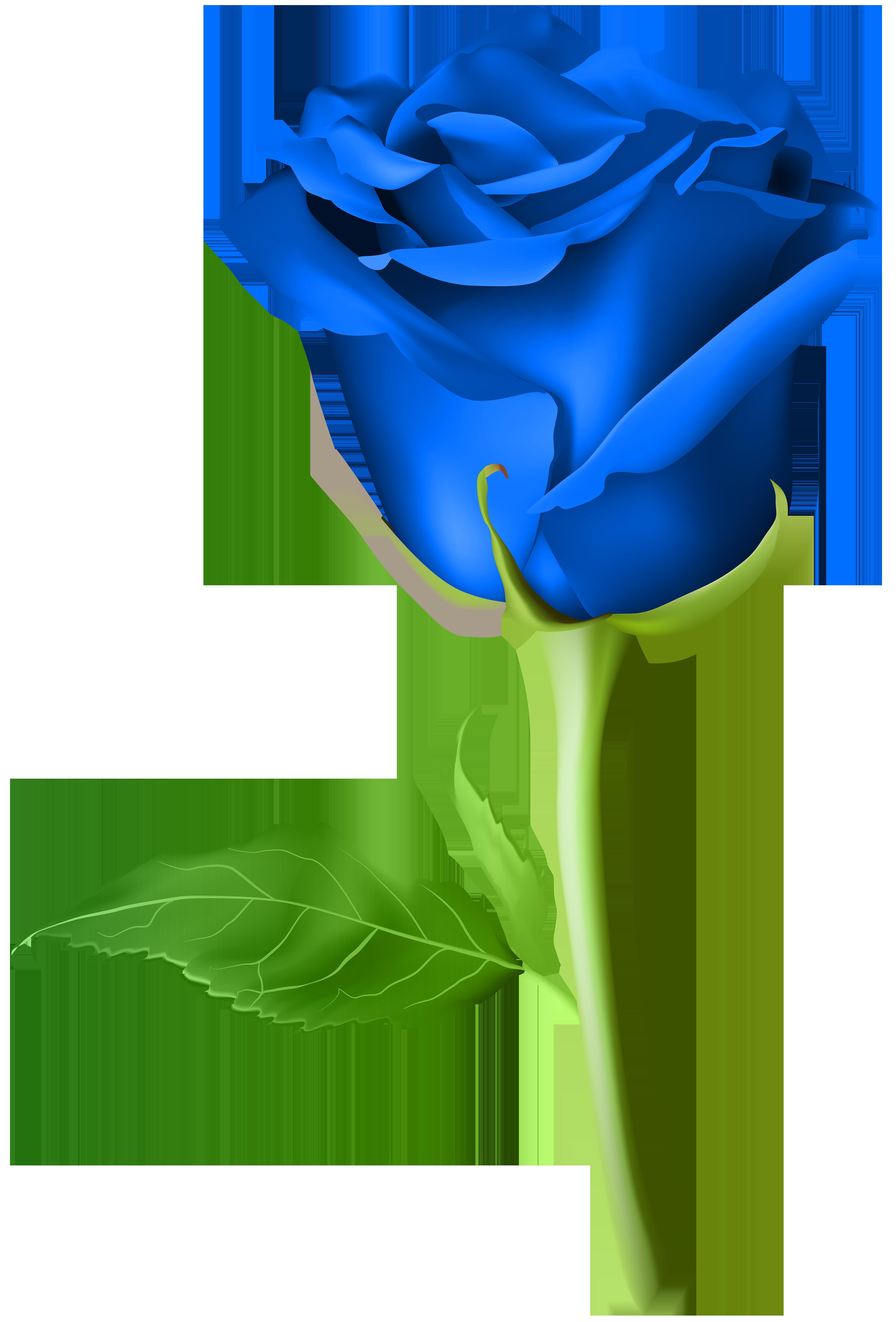 Clipart roses emoji. Rose blue transparent png