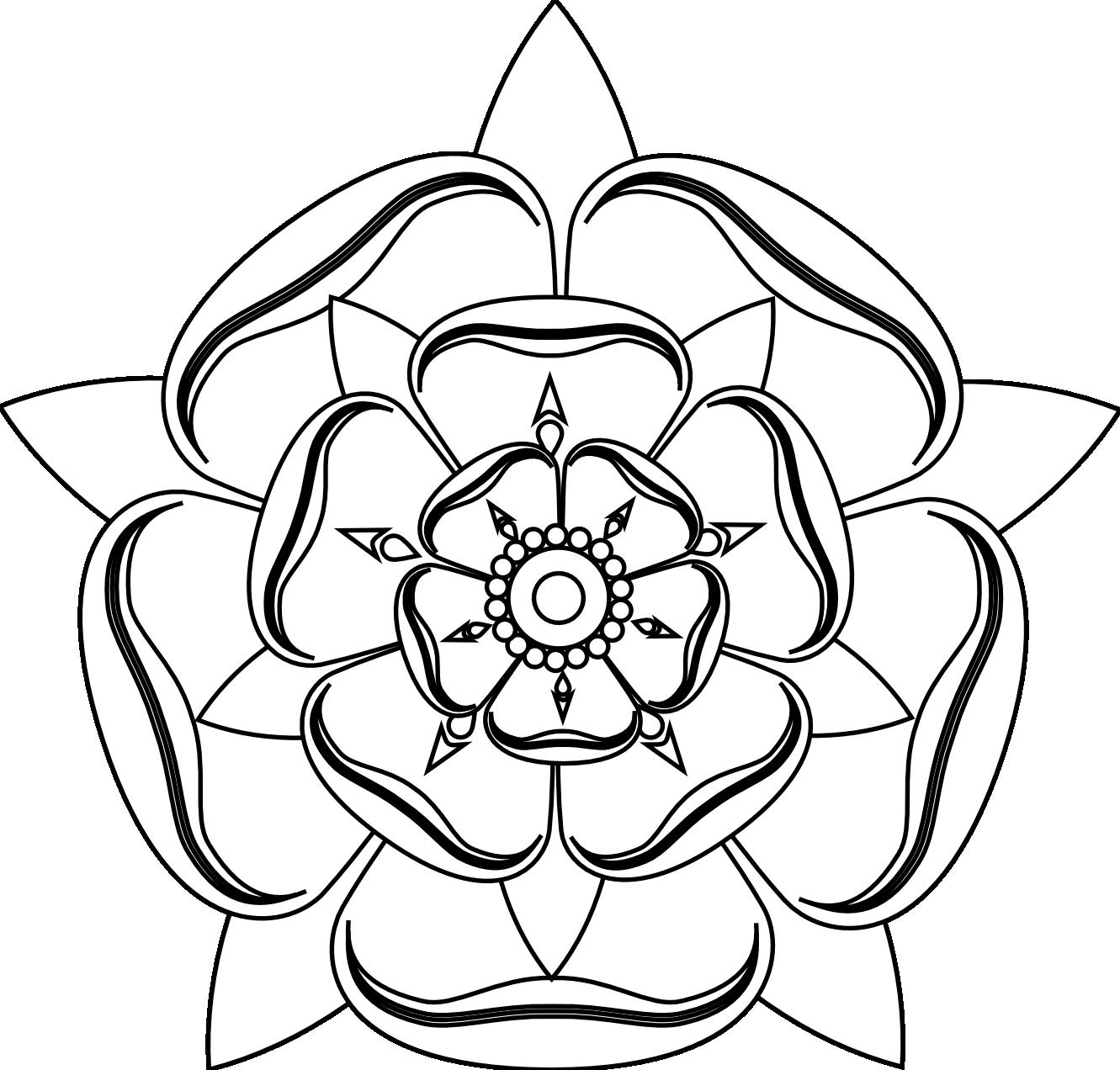 English Rose Drawing at GetDrawings