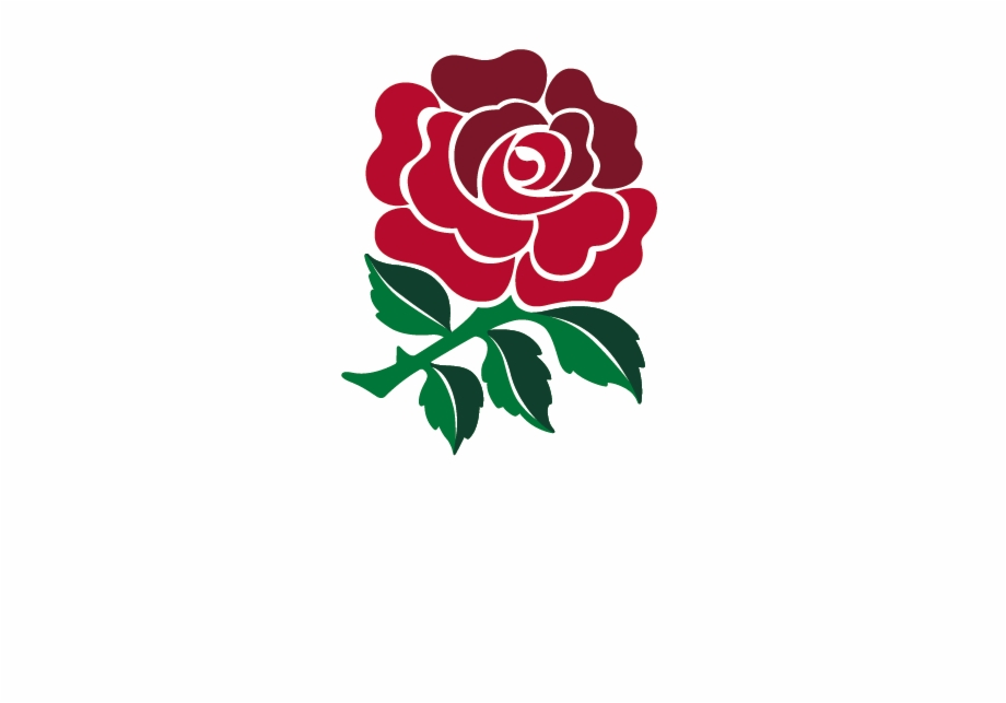 Clipart rose english rose. England rugby travel primary