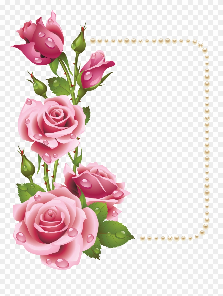 Clipart rose frame. Large transparent with pink