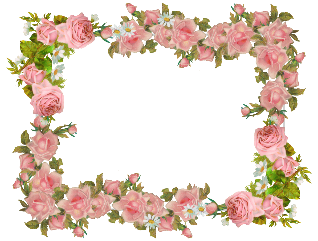 Free digital vintage and. Clipart rose frame