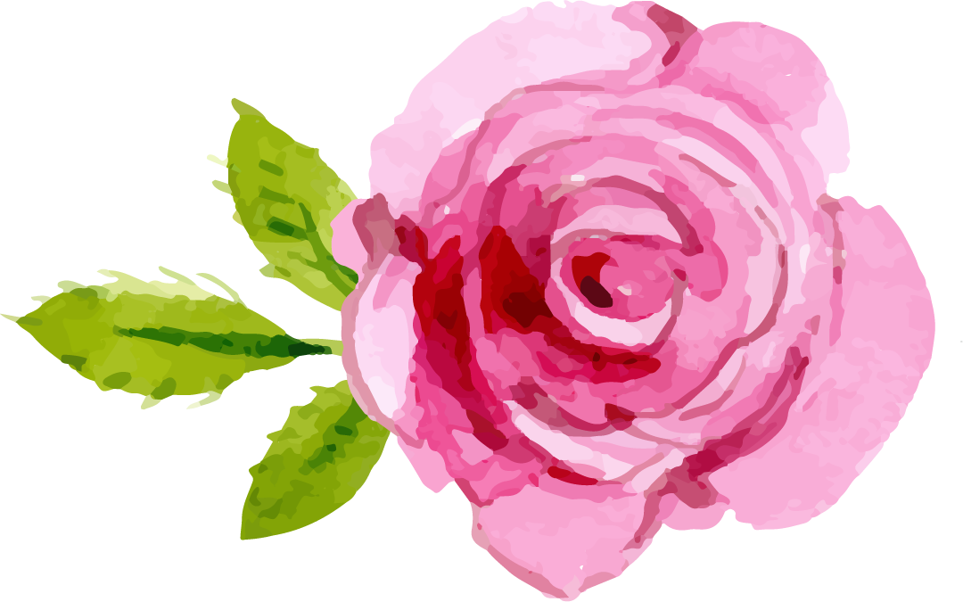 Png images a flower. Clipart rose giving