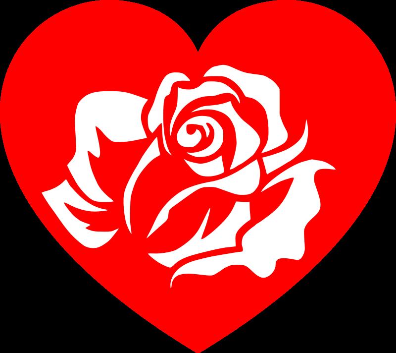 Rose white medium image. Heart clipart garden