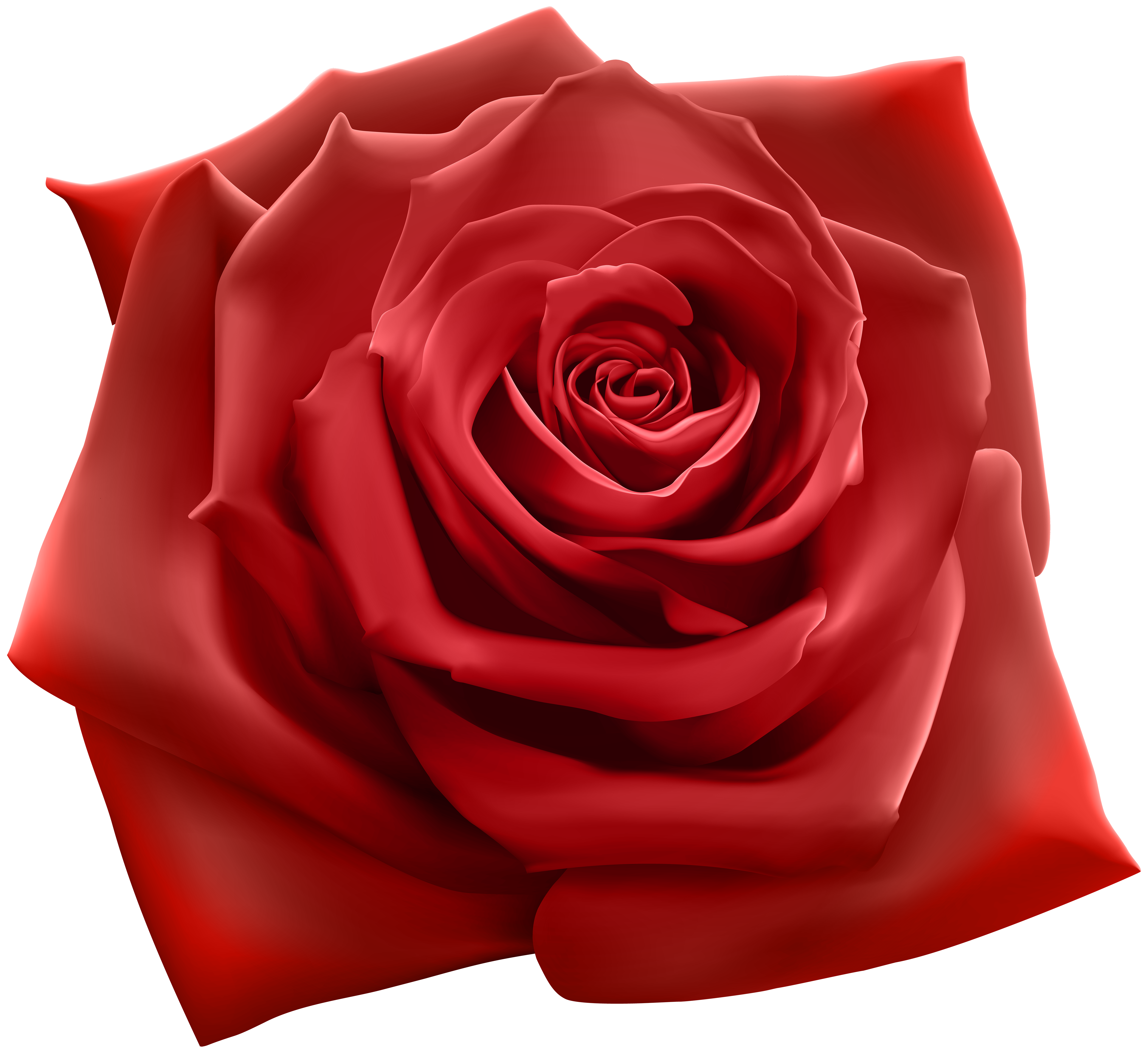 Red rose png image. Clipart roses high resolution