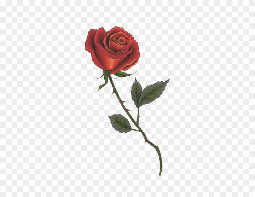 Red rose pinclipart . Clipart roses illustration