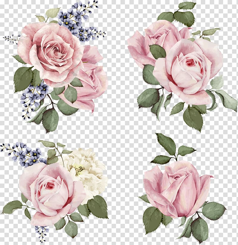 Flower hand painted roses. Rose clipart illustration