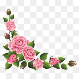 pink rose border. Clipart roses lace