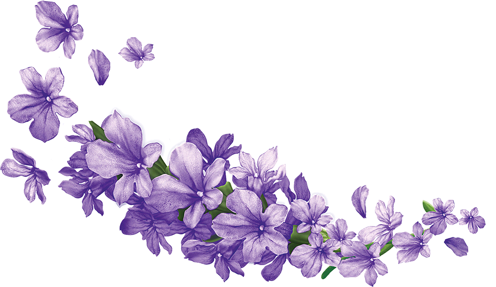 Clipart rose lavendar. Pin by parfenos on