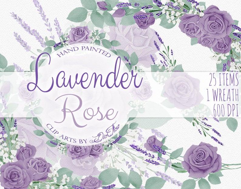 Watercolor clip art purple. Lavender clipart lavender rose