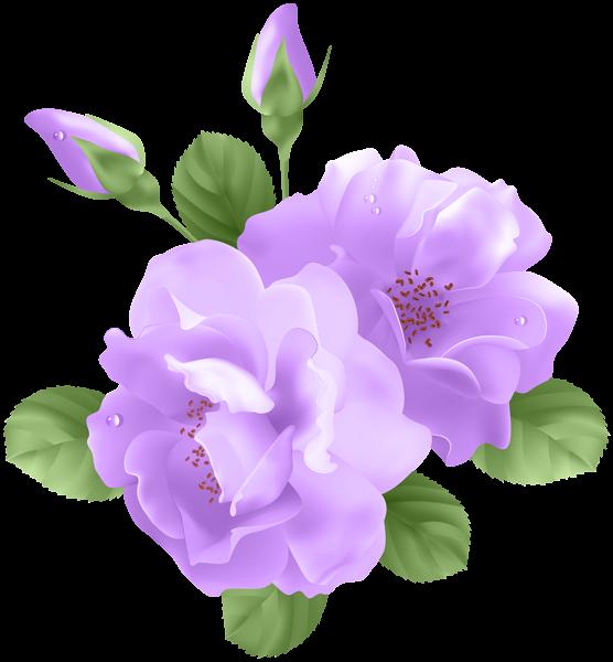 Rose clip art vector. Lavender clipart transparent background