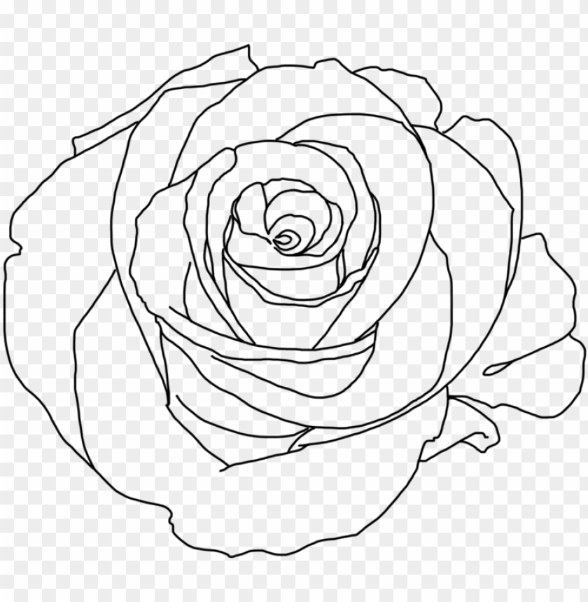 Clipart rose minimalist. Png tumblr download aesthetic