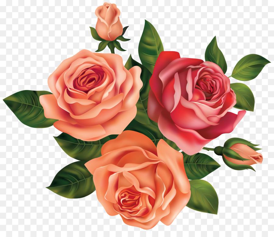 Clipart rose peach rose. Black pink flower transparent