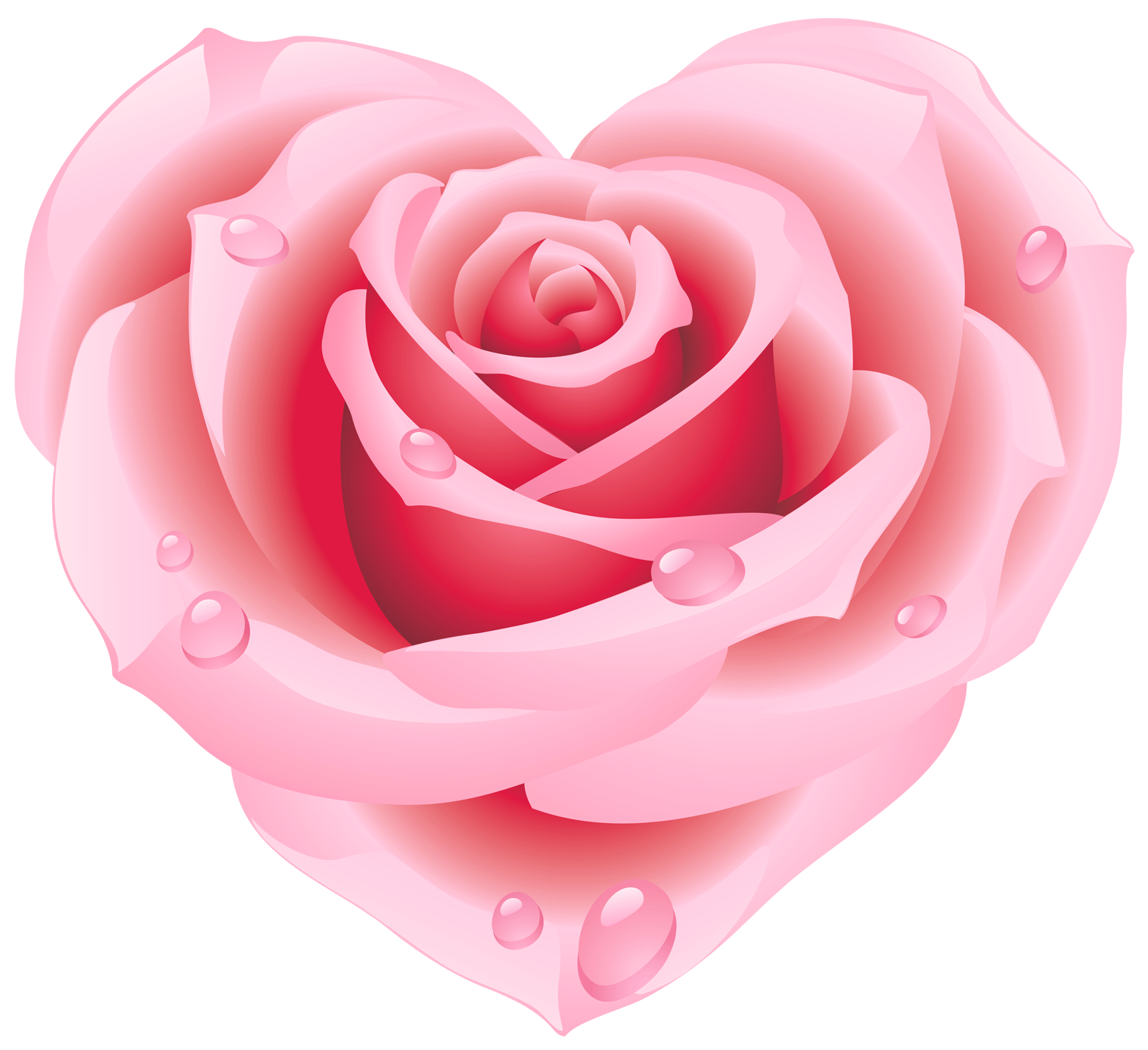 Large pink rose heart. Clipart roses shape