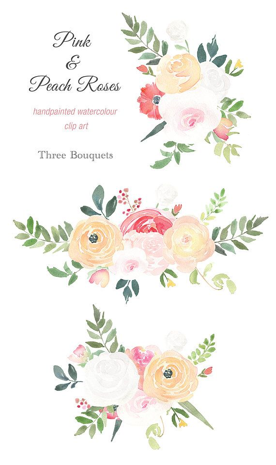 Clipart rose peach rose. Watercolour bouquet pink and