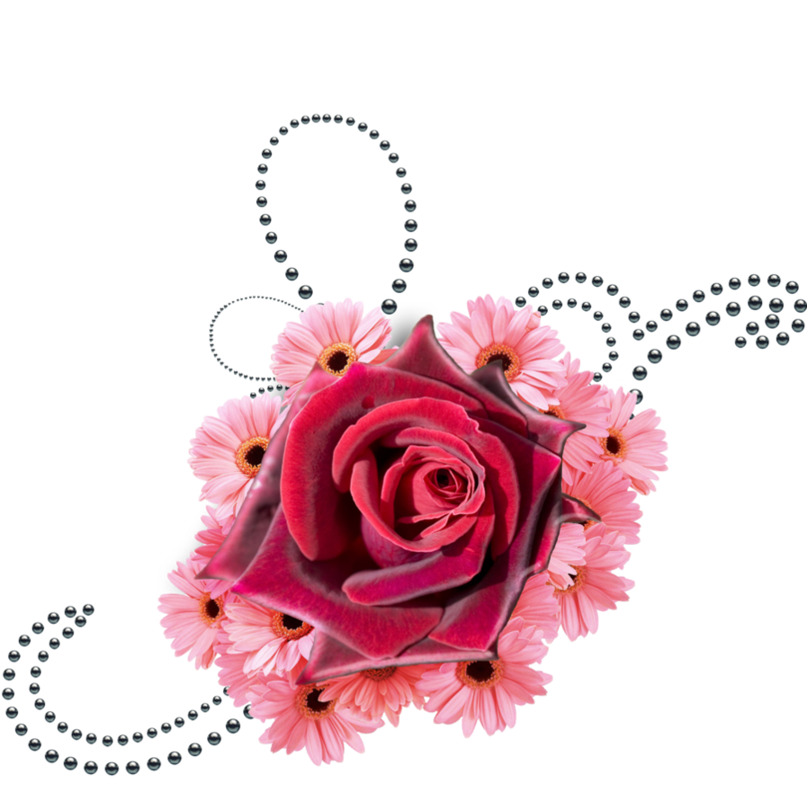 Clipart rose pearl. Flowers and black pearls