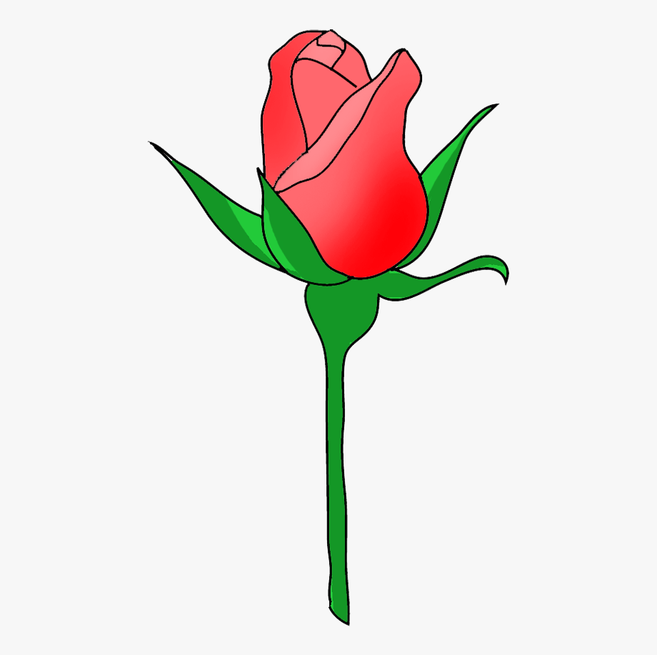Clipart roses rose bud. Banner download images