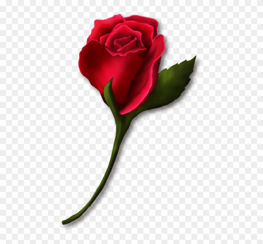 Clipart roses rose bud. Download red painted png