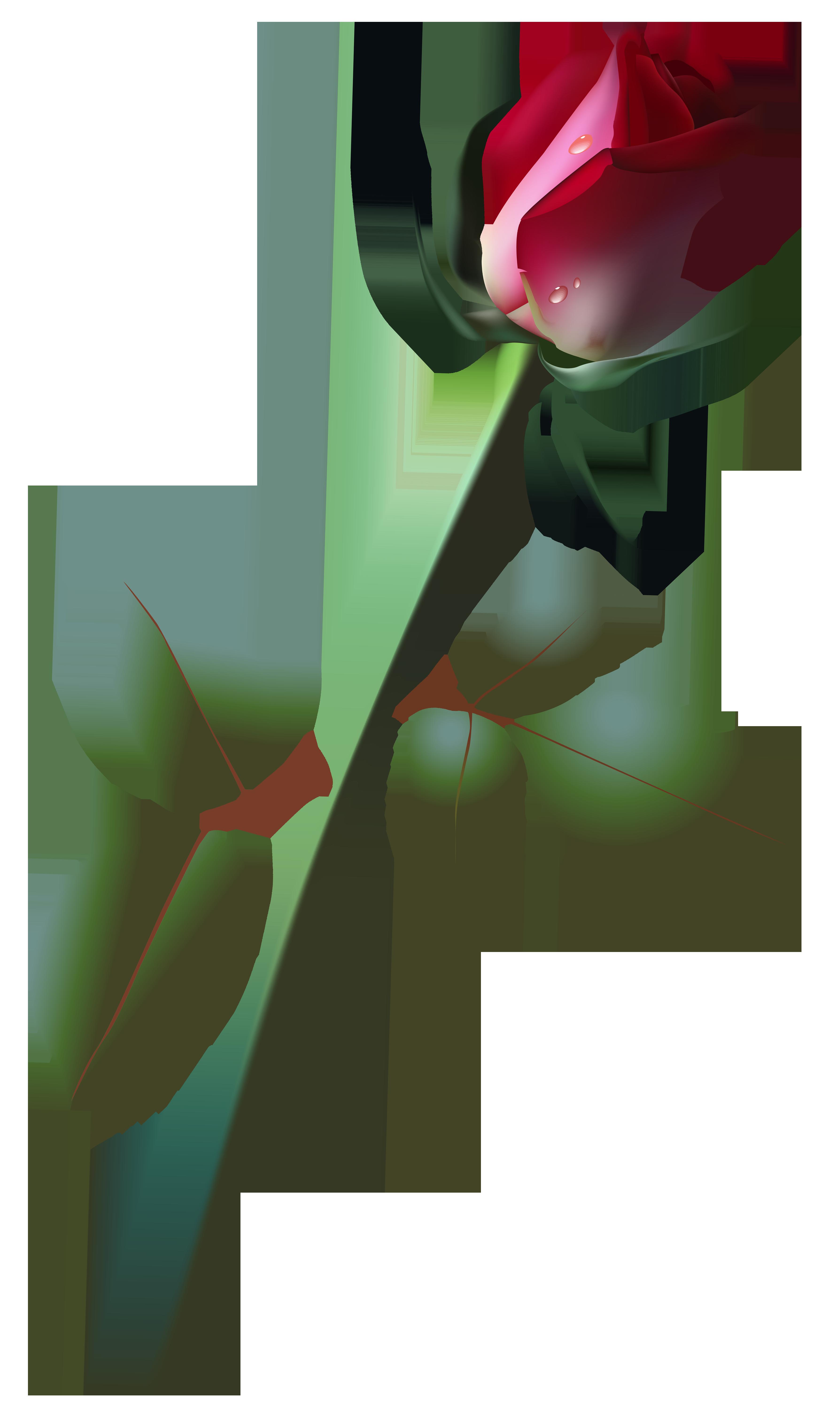 Clipart roses rose bud. Beautiful png clip art