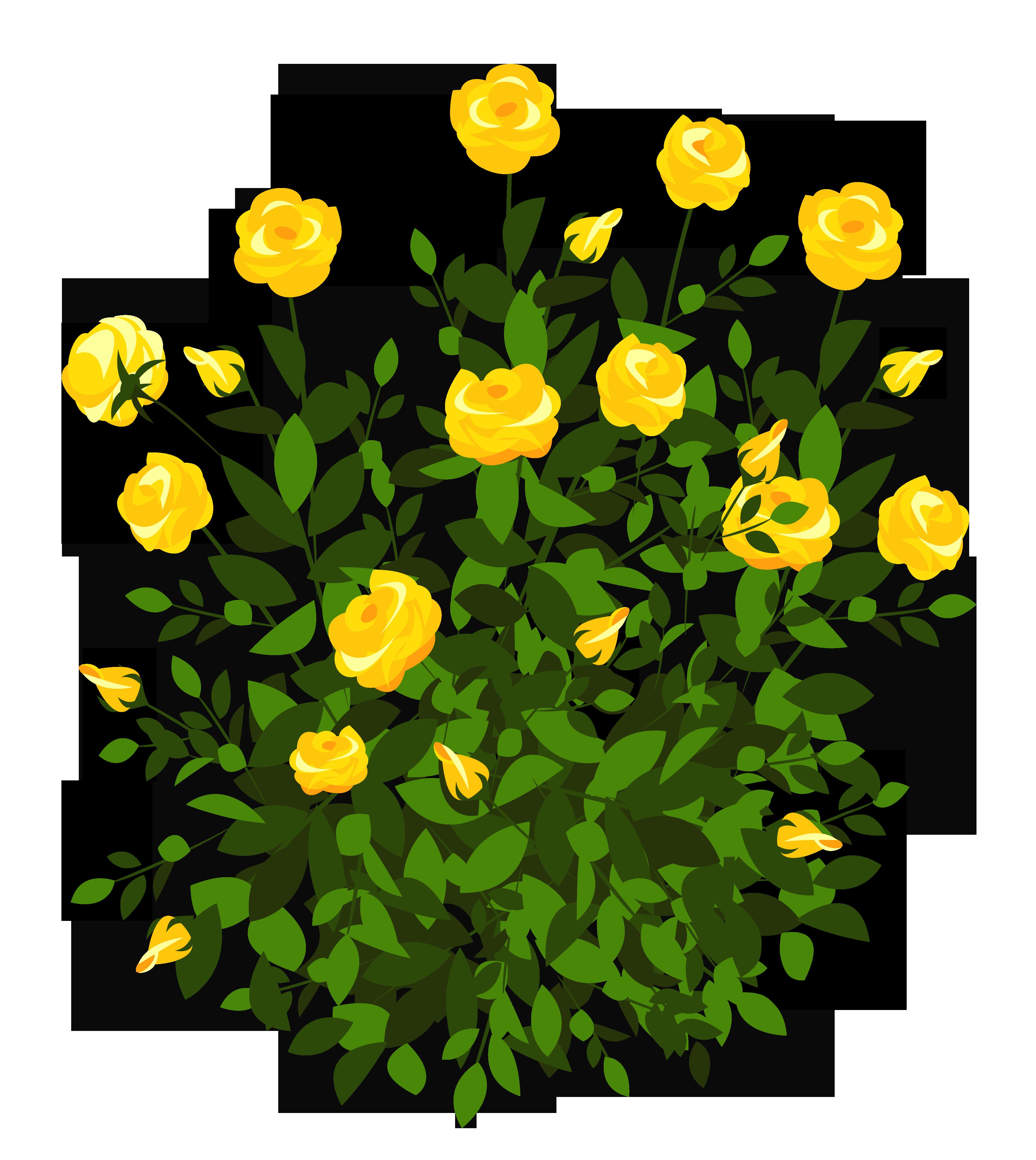 Rose clipart shrub. Flower clip art yellow