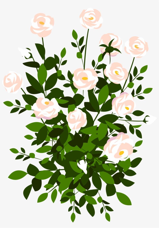 Transparent bush clip art. Clipart rose shrub