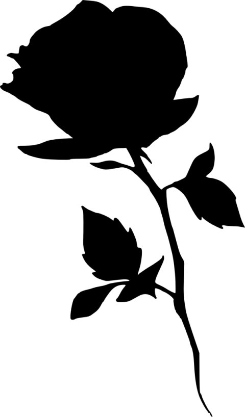 Png free images toppng. Clipart rose silhouette
