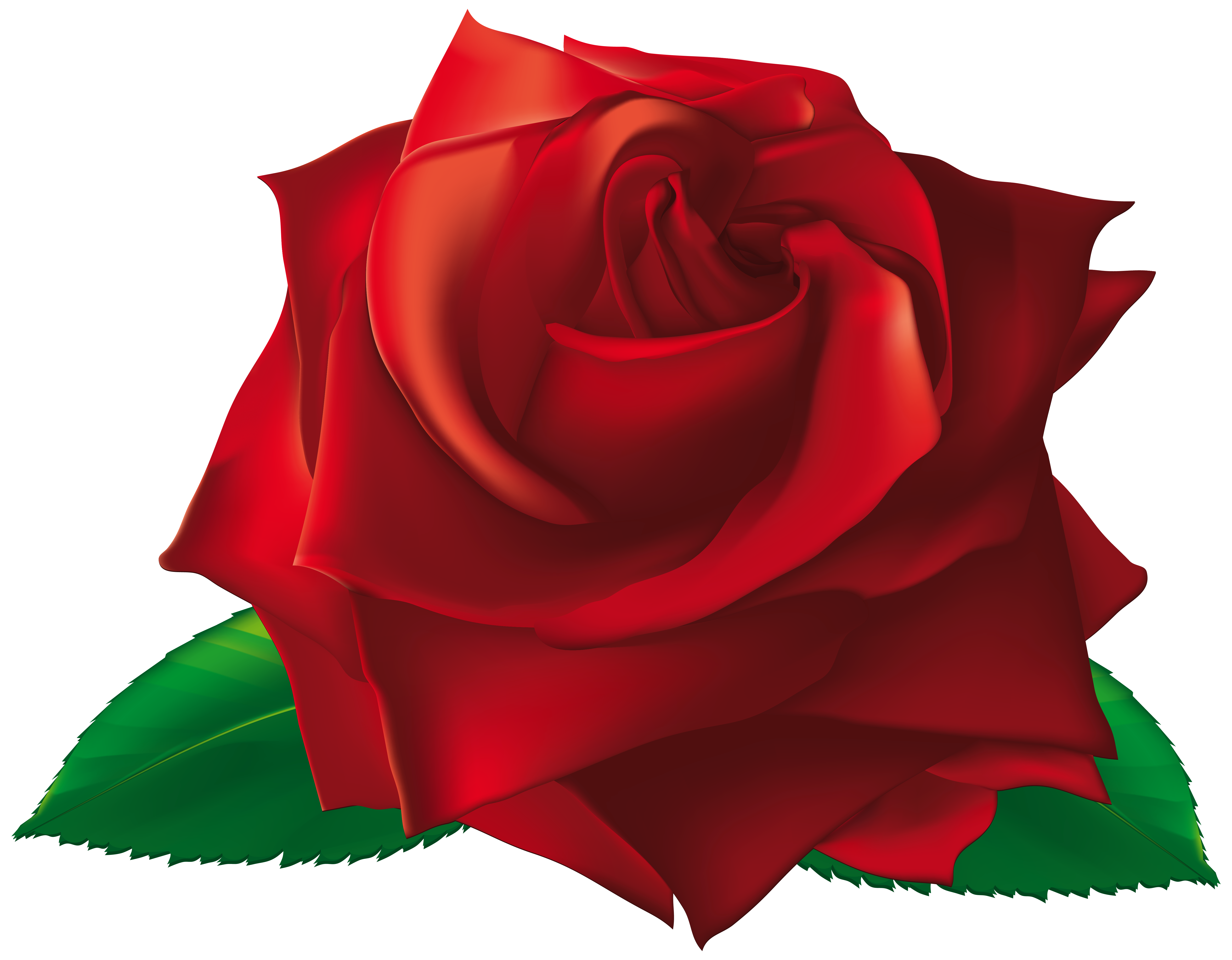 Red png image gallery. Rose clipart single